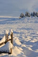 Dava snow scene